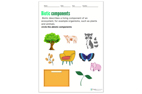 Biotic Components (Key Stage 1)
