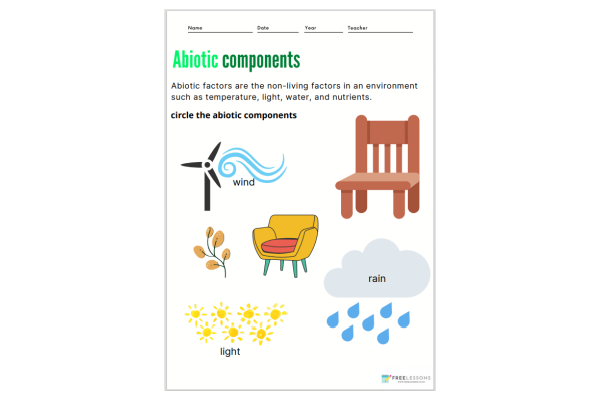 Abiotic Components (Key Stage 1)