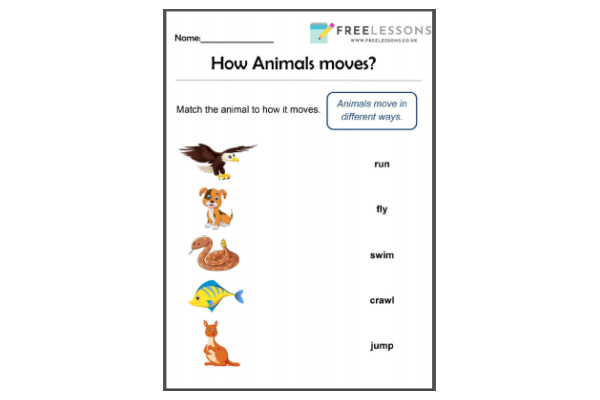 How Animals Move (Key Stage 1)