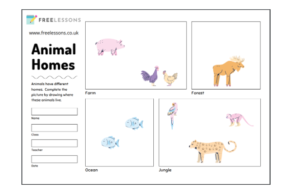 Animal Habitats (Key Stage 1)