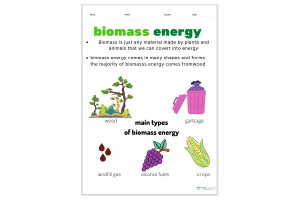 Biomass Energy (Key Stage 1)